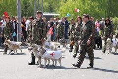 El regimiento inmortal de la acción en desfile de la victoria Foto de archivo libre de regalías