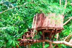 el registro de madera y del puente de la choza fue construido en el bosque para la actividad de la aventura del explorador foto de archivo libre de regalías