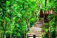 el registro de madera y del puente de la choza fue construido en el bosque para la actividad de la aventura del explorador imagen de archivo