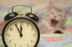 El reloj de alarma Imágenes de archivo libres de regalías