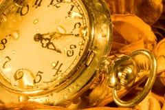 El reloj de bolsillo y seca las hojas Foto de archivo libre de regalías