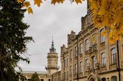 El reloj de la universidad muestra el otoño de oro Fotos de archivo