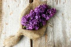 El resorte florece la lila imagenes de archivo