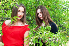 El retrato de chicas jóvenes hermosas se vistió en ornoe y largo rojo Fotografía de archivo