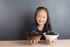 El retrato de la edad asiática de la niña 6 años come el arroz Imagenes de archivo