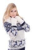 El retrato de la mujer atractiva joven que presenta en invierno viste el aislador Imagen de archivo libre de regalías