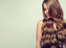 El retrato de la mujer joven magnífica con elegante compone y peinado perfecto Imagenes de archivo
