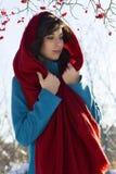El retrato de la mujer morena joven se vistió en bufanda roja y capa azul sobre el fondo rojo de las bayas foto de archivo libre de regalías