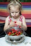 El retrato de la niña que come la fresa roja madura da fruto del colador Imagenes de archivo