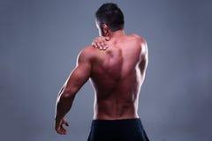 El retrato de un muscular sirve detrás Imagenes de archivo