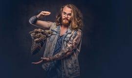 El retrato de un varón tattoed del inconformista del pelirrojo con el pelo lujuriante largo y la barba llena se vistió en una cam fotografía de archivo libre de regalías