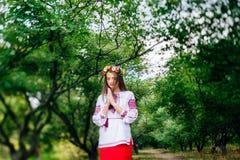 El retrato de una muchacha en ucraniano del nationac viste Foto de archivo