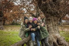 El retrato del abrazo del grupo de amigos jovenes se sienta en un tronco grande de un árbol Foto de archivo