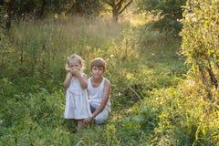 El retrato del verano de los niños del hermano está en manzanar viejo Imagen de archivo