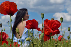 El retrato hermoso de la mujer joven en amapolas rojas coloca Imagen de archivo