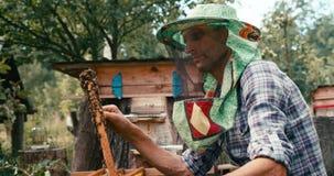 El retrato lateral del viejo apicultor en velo especial del sombrero está examinando el panal con las abejas en el colmenar Tiro  almacen de metraje de vídeo