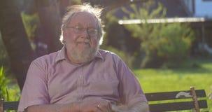 El retrato sonriente feliz del mayor retiró al abuelo masculino mayor con el perro almacen de video