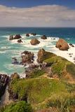 El retrato tiró del paisaje marino del punto de la pepita, Nueva Zelanda Fotos de archivo libres de regalías