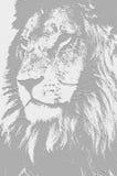 El rey. Imagen de archivo