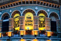 Rey del león Imagen de archivo libre de regalías