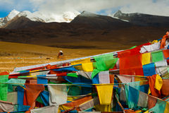 El rezo tibetano señala la montaña natural del paisaje por medio de una bandera Fotos de archivo libres de regalías