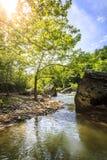 El río Cumberland Fotografía de archivo