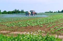 El rociador agrícola de la máquina, proceso de los campos de sustancias químicas, protegiendo coloca contra parásitos imagen de archivo