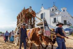 El ROCIO,安达卢西亚,西班牙- 5月22 :与公牛的Romeria,在参观圣所以后去村庄 2015年 库存图片