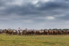 EL ROCIO, ANDALOUSIE, ESPAGNE - 26 juin 2016 : Les bergers de villageois mènent un troupeau de chevaux sauvages sur le baptême Photo libre de droits