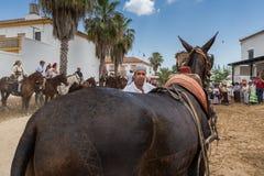 EL ROCIO, ANDALOUSIE, ESPAGNE - 22 mai : Romeria après visite du sanctuaire va au village Photos stock