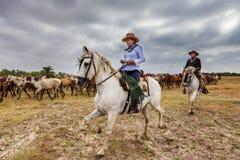 El ROCIO, ANDALUCIA, HISZPANIA - 26 2016 CZERWIEC: Pasterski kobiety equestrian prowadzi stada dzicy konie na ochrzczeniu Obraz Royalty Free
