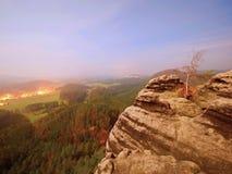 El rocoso con el árbol Noche de la Luna Llena en una montaña hermosa Picos y colinas de la piedra arenisca crecientes de la niebl Imagen de archivo libre de regalías