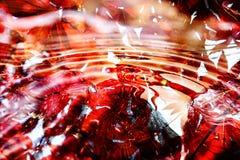 El rojo abstracto deja el fondo Imagenes de archivo