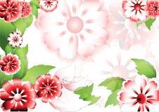 El rojo florece el fondo con el espacio para text2 Imágenes de archivo libres de regalías