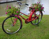 El rojo pintó la bicicleta con un cubo de flores coloridas Foto de archivo