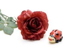 El rojo se levantó con el ladybug Fotos de archivo libres de regalías