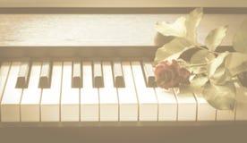 El rojo se levantó en piano Foto de archivo libre de regalías