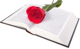 El rojo se levantó en una biblia Imágenes de archivo libres de regalías
