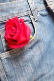 El rojo subió en un bolsillo de la mezclilla para Valentine& x27; concepto del día de s fotos de archivo libres de regalías