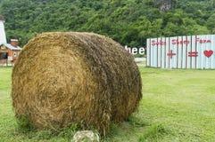 El rollo de la hierba secada, Cha-es Fotos de archivo libres de regalías