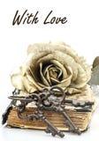 El romance es la llave a amar Imagen de archivo