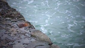 El rompeolas del mar es lavado por las ondas en la cámara lenta metrajes