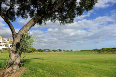 El Rompido Golf course, Andalusia, Spain Stock Images