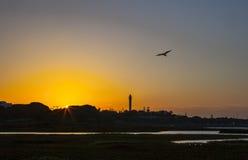 El Rompido lighthouse and marina at sunrise from marshlands. Huelva, Spain Royalty Free Stock Image