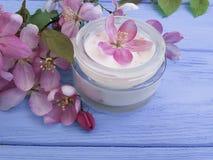 El rosa cosmético poner crema del acné de la loción florece en salud de madera púrpura Fotos de archivo libres de regalías