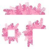 El rosa exótico tropical determinado de la selva se va y las plantas imagen de archivo