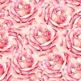 El rosa subió modelo inconsútil de las flores en el estilo romántico para el diseño de telas Ejemplo del trabajo hecho a mano de  ilustración del vector