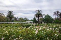 El Rosedal Rose Park at Bosques de Palermo - Buenos Aires, Argentina royalty free stock photo