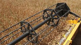 El rotor de la máquina segadora corta los oídos del trigo almacen de metraje de vídeo