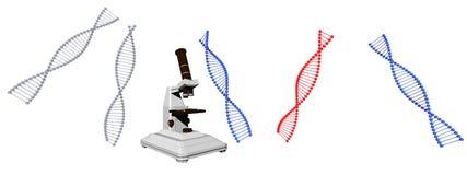El símbolo de la DNA en él aisló en el fondo blanco - representación 3d imagen de archivo libre de regalías